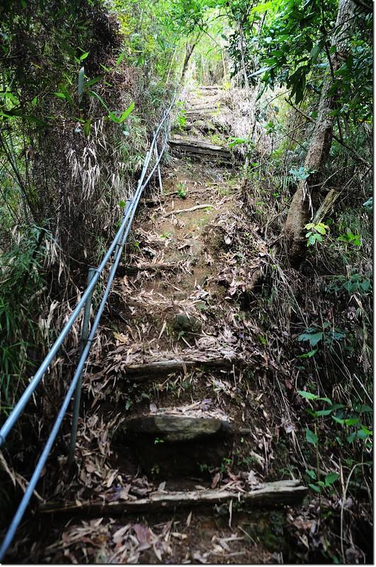 新寮山登山步道