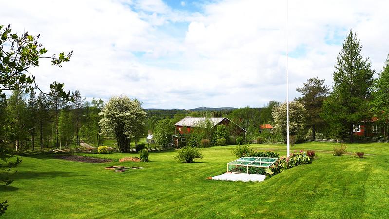 2015 Sommar Övik