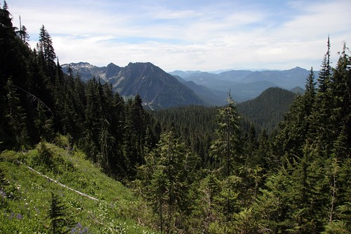 View from Van Trump Trail - Mt Rainier
