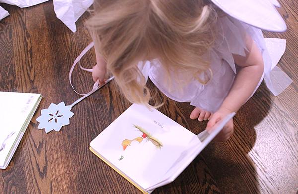 fairy-book