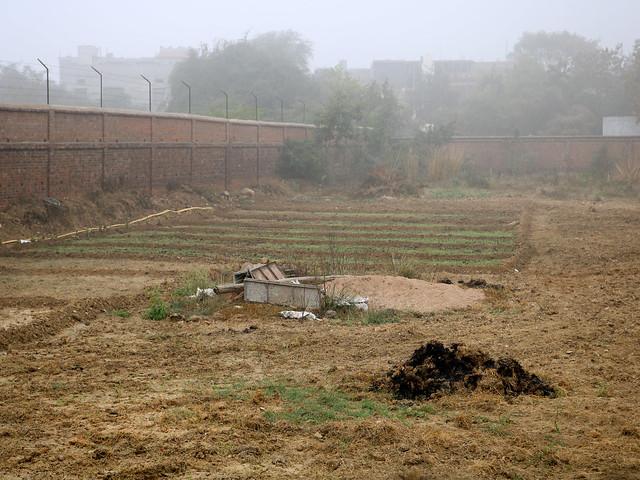 सीता सागर की जमीन पर हो रही अवैध तरीके से खेती