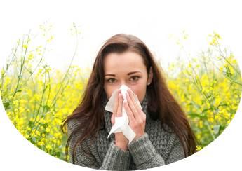 Obat Rhinitis Alergi Di Apotik