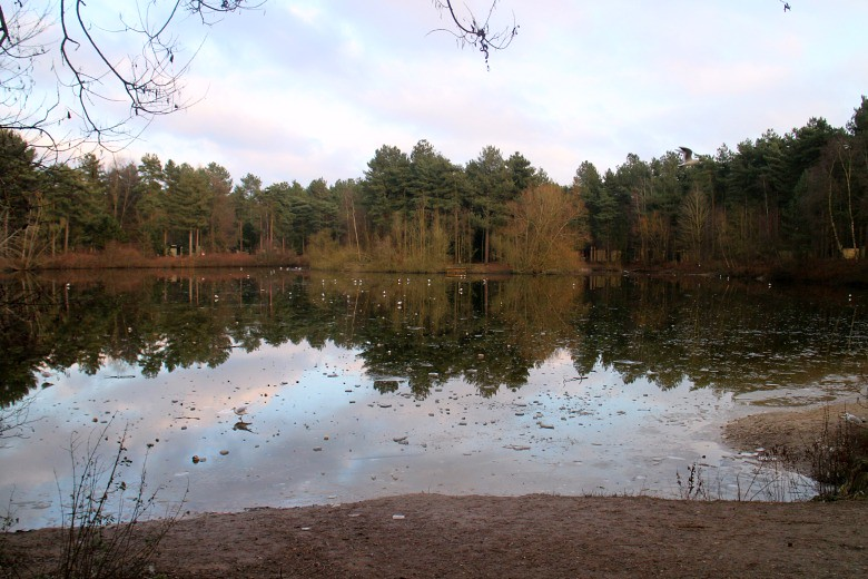 Center Parcs Elvedon Forest Review