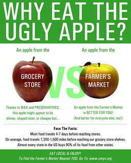 Why Eat the Ugly Apple? | by roboppy