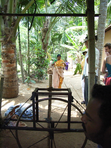 Kerala Tour Blog Posts
