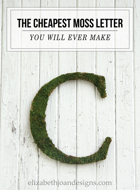 The Cheapest Moss Letter You Will Ever Make