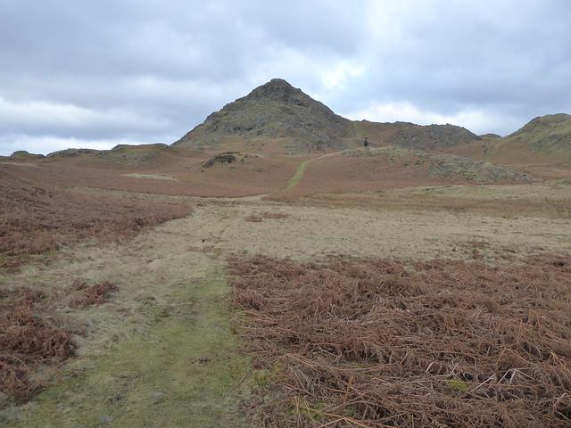 CeMoRe walking seminar around Dunnerdale Fells