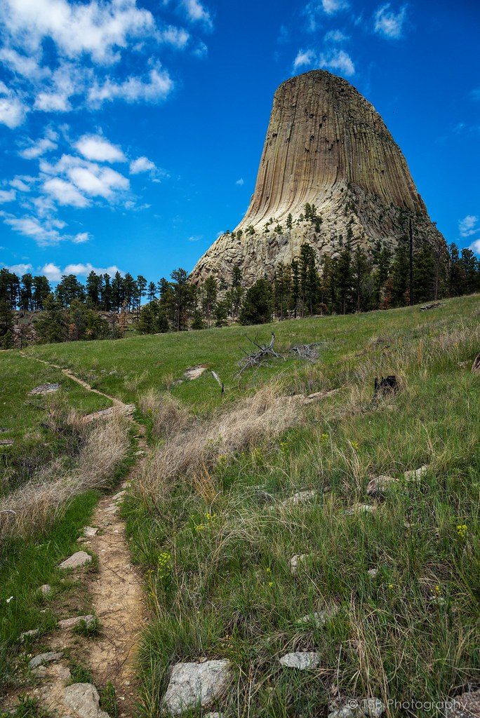 devils tower black singles We visited devils tower en route from deadwood/black hills to southern wy we stopped for a few hours and took the short, paved hike around the base of the tower.