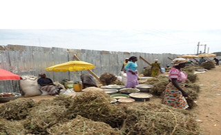 A group of women selling fodder at Wa market in northern Ghana (Photo credit: ILRI/Solomon Konlan)
