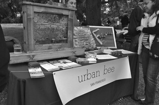 SF Botanical Garden - Urban Bee
