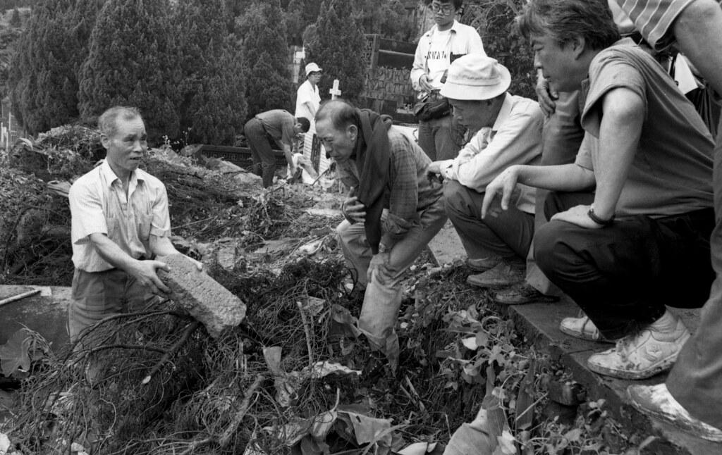 陈映真(右)凝视六张犁乱葬岗出土的白色恐怖受难者墓碑。(摄影:蔡明德)