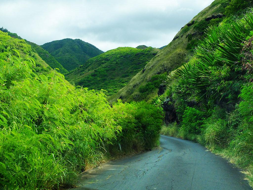 Maui-(44)