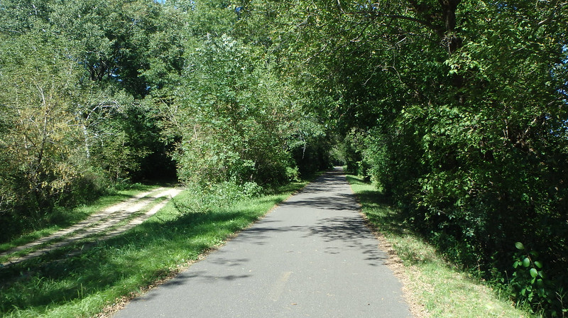 paved path through the woods, with an unpaved horse path at the left, on a sunny day