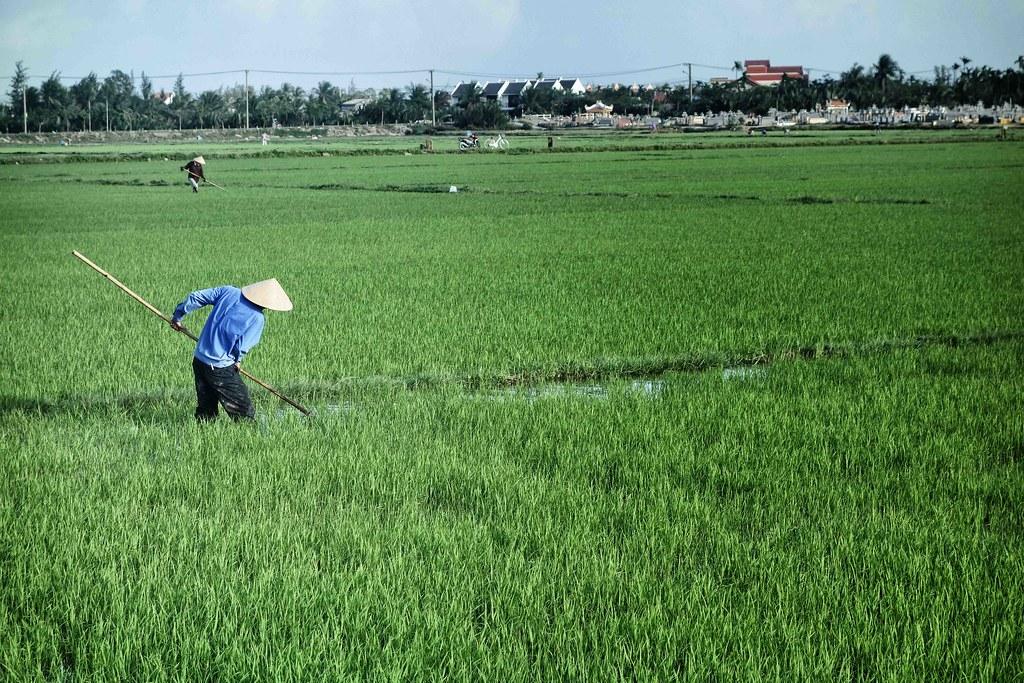 Vietnam - Hoi An - Hai Ba Trung