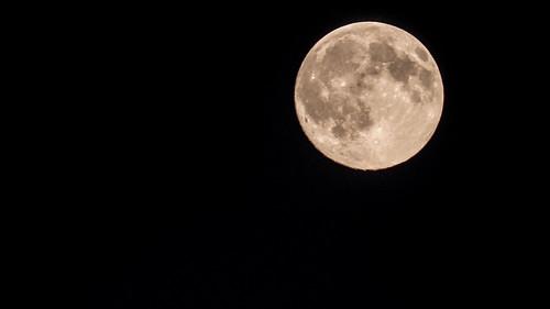 Lune bleue 30 juillet 2015 blue moon yann caradec for Jardin lune juillet 2015
