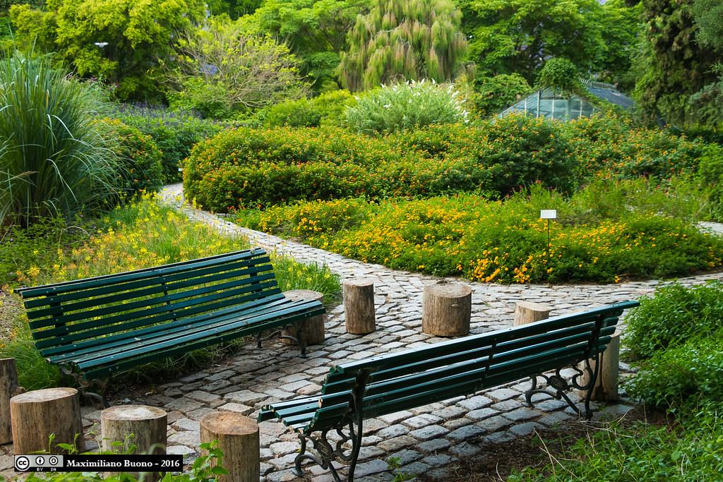 Bancos en el Jardín Botánico, Buenos Aires / benches in th… | Flickr