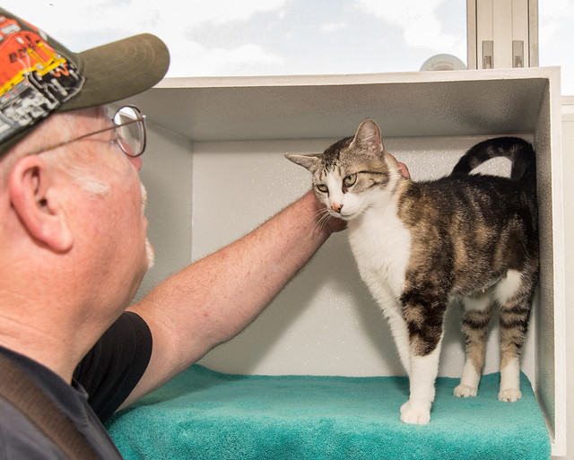 Gary works with cat Charlene