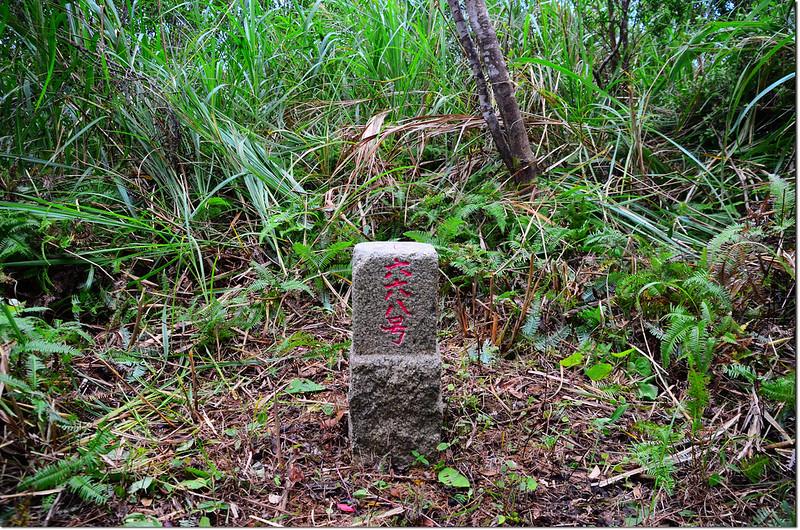 獅子獅山三等三角點(# 668 Elev. 518 m) 1