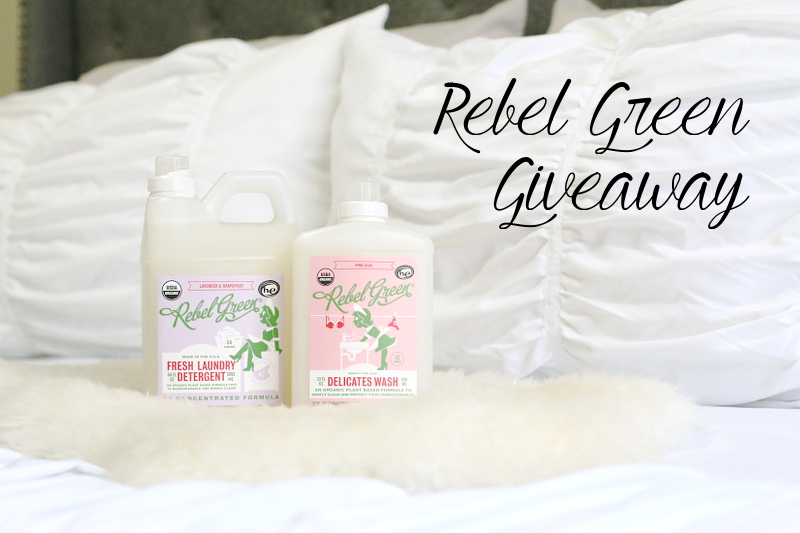 rebel-green-cleaning-giveaway-4