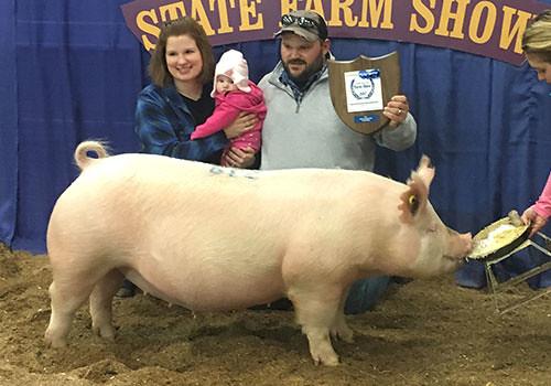 2017 Sunglo Hog Champions   Flickr