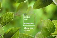 Greenery: Pantone 2017 by hobohofficial