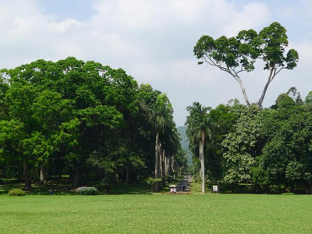 121-Kandy