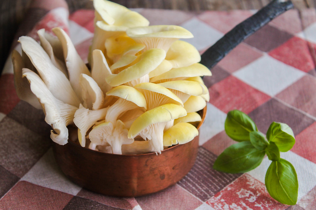 Gnocchis au basilic et pleurotes {sans lait}