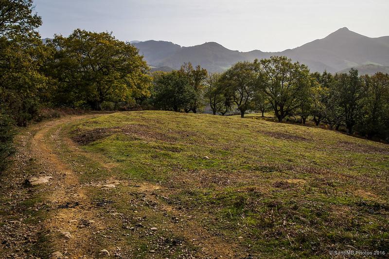 Pequeño prado cerca de la cima del monte Azkar