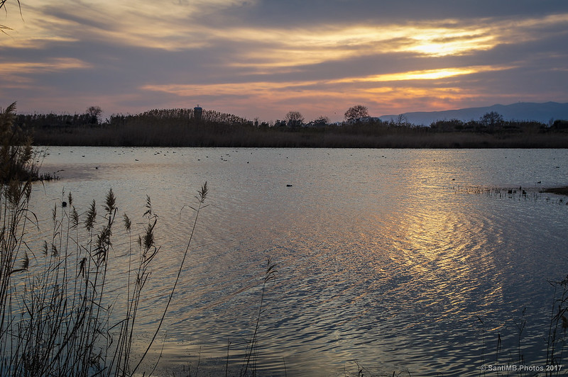 Laguna de Cal Tet al atardecer