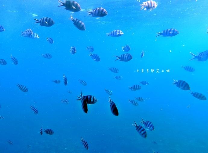 25 沖繩自由行 那霸一日遊 波上宮、波之上海灘、海底觀光遊覽船、白鯨號夕陽遊輪晚餐