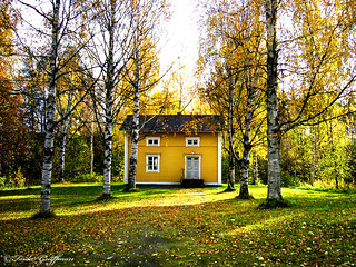 someones yellow house | by ~Frida*~