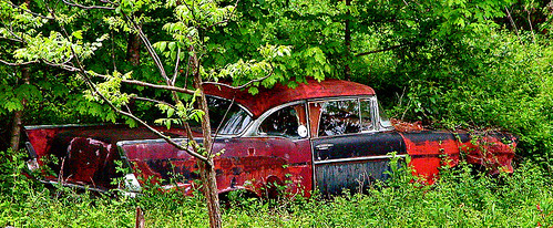1957 Chevrolet in a Woods | by dok1