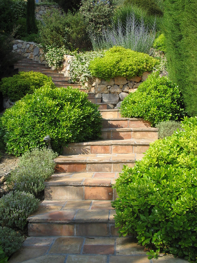 Stairs terracotta stairs leading up a garden punctuated for Landscape stairs design
