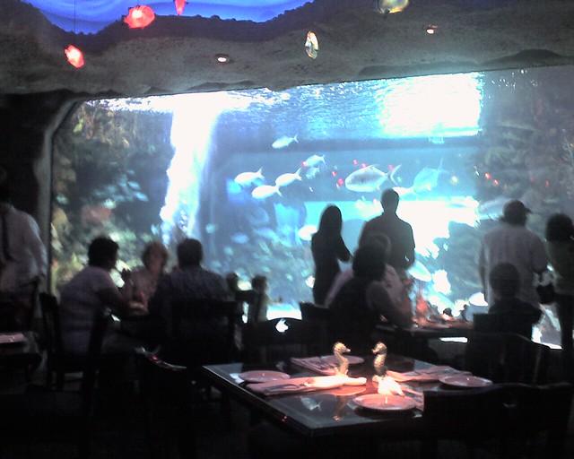 Aquarium Restaurant Downtown Houston 2006 Aquarium