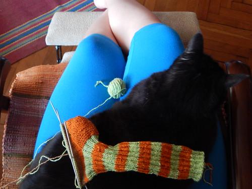 вязание и чёрный кот Муся | ХорошоГромко.ру