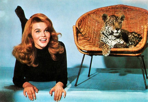 Ann Margret in Kitten with a Whip (1964)