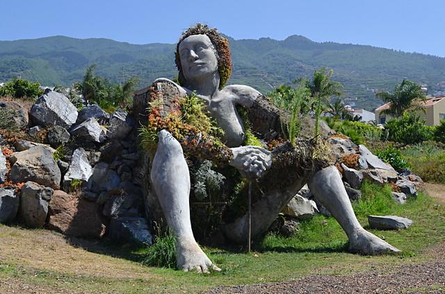 Green giant, Santa Ursula, Tenerife