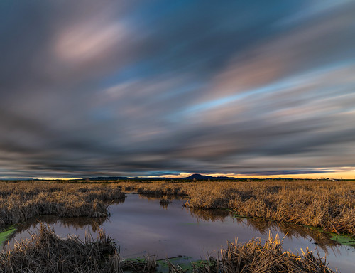 From Twichell Slough | by mikeSF_