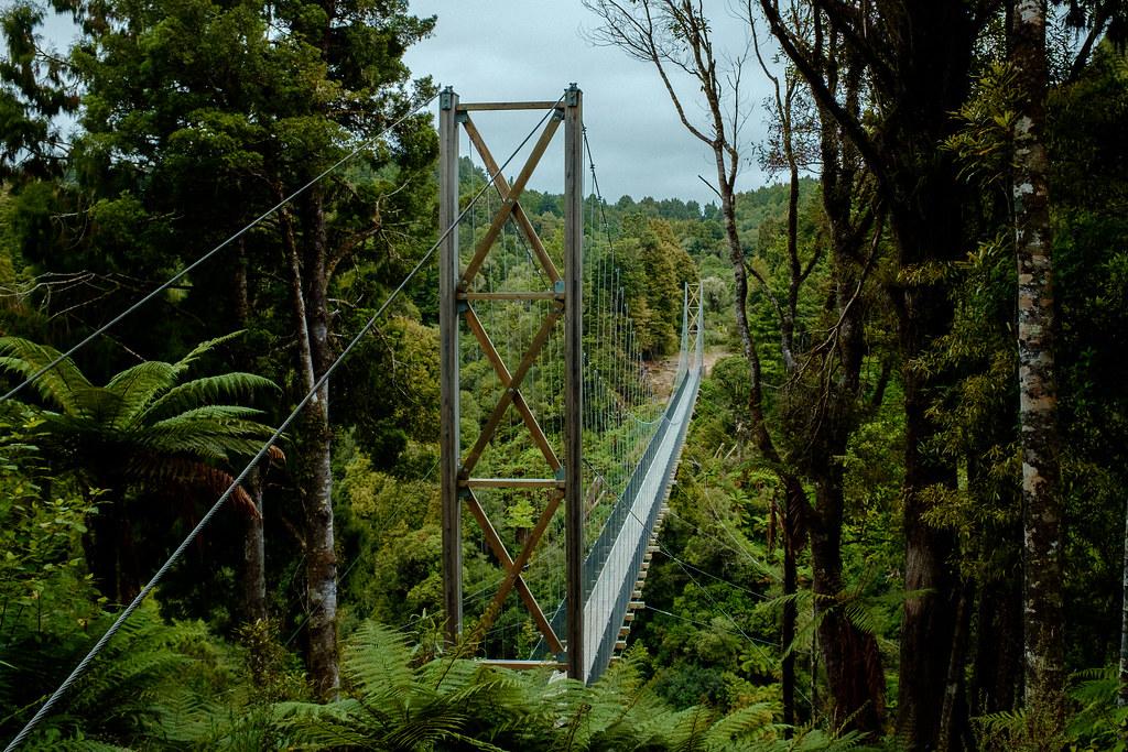 170113_Rotorua to Nat Park -61