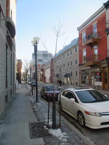 South, rue Wolfe