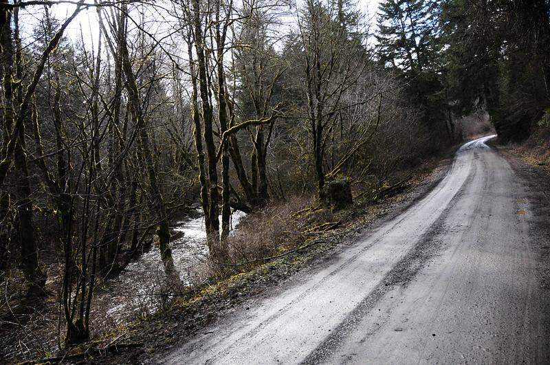 Timber Logjam-39.jpg