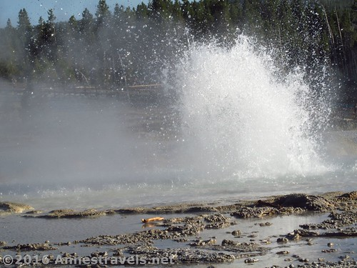 Sawmill Geyser, Yellowstone National Park, Wyoming