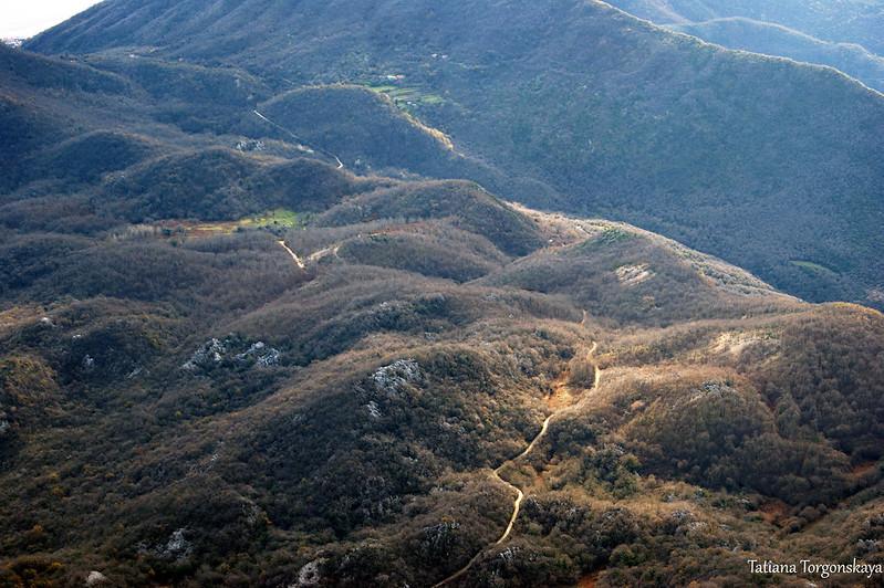 Вид на горную дорогу