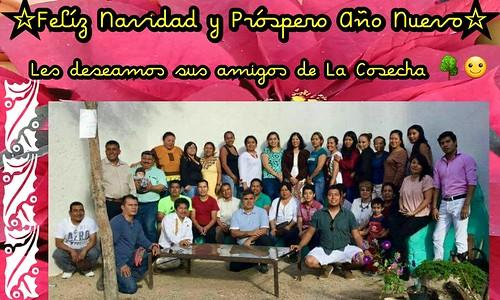 La Cosecha Oaxaca