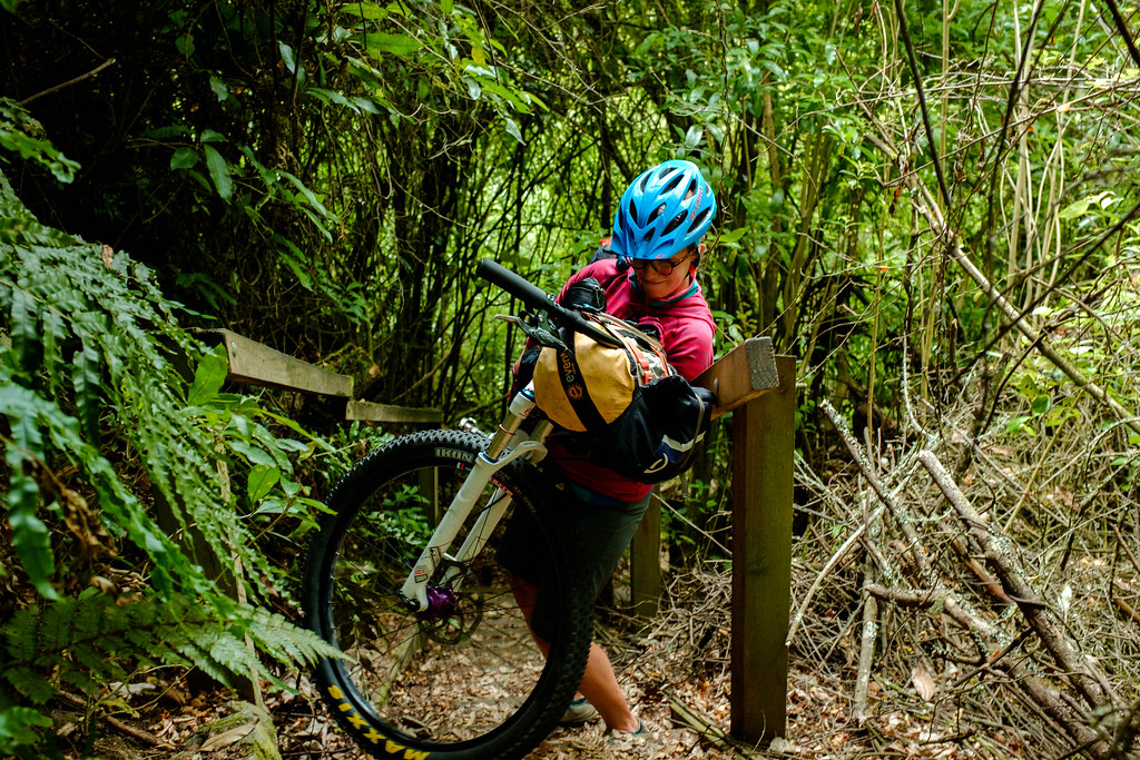 170113_Rotorua to Nat Park -31