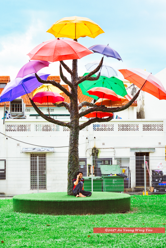Singapore 2016: Little India - Beneath The Umbrella Tree