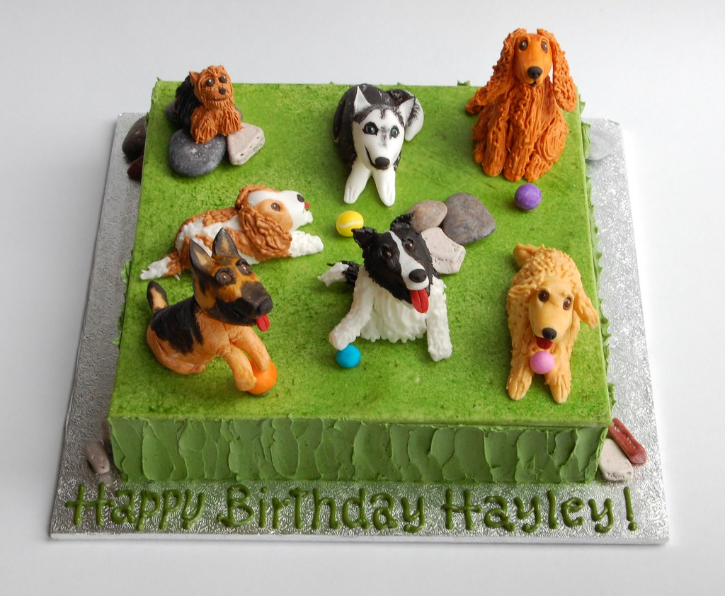 Oct 2415 Hayleys Puppy Dog Birthday Cake Charmchang Flickr