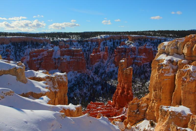IMG_9125 Ranger-Led Snowshoe Walk