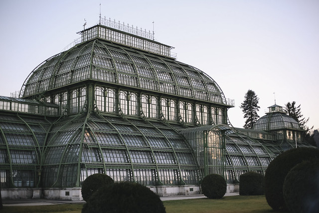 Blog The Curly Head, Palmenhaus Vienna, Photography by Amelie Niederbuchner, Wien, Travel Diary, MB1_9710edkomp