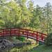 Sarah P. Duke Gardens - Arched Bridge